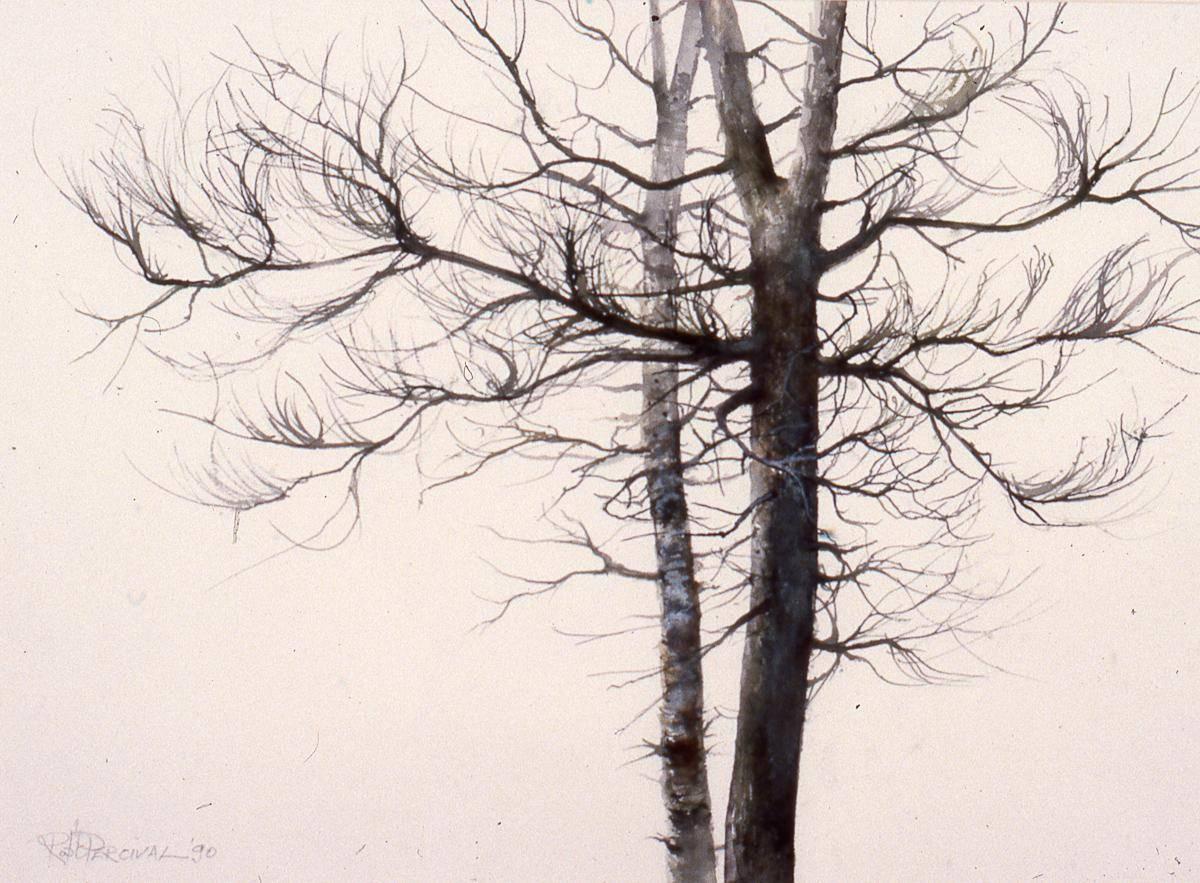 Percival, Robert, 1983, Tamarack Trees, 74x93