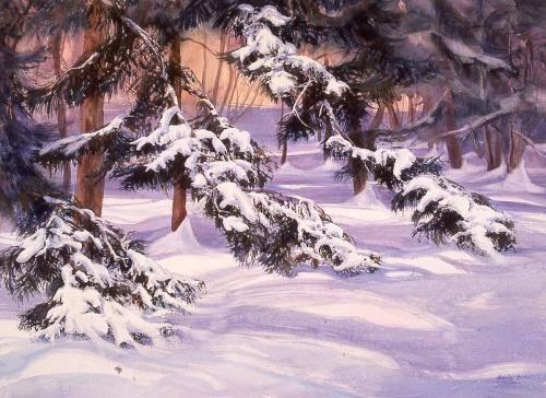 Beaver, Glenda, 2001, Snowladened Spruce